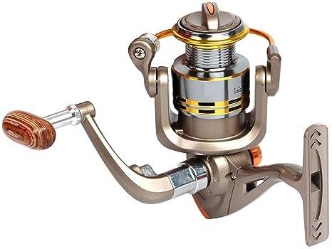 Review Pustor Fishing Reels Light