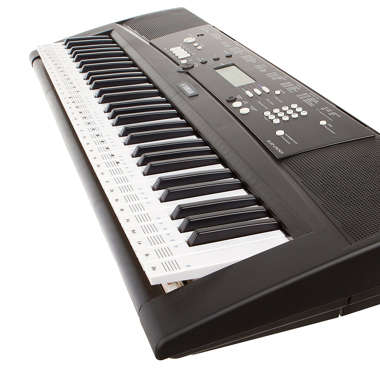 Pegatinas Keysies para notas musicales, transparentes, de plástico y despegables - Más guía útil de colocación.: Amazon.es: Instrumentos musicales