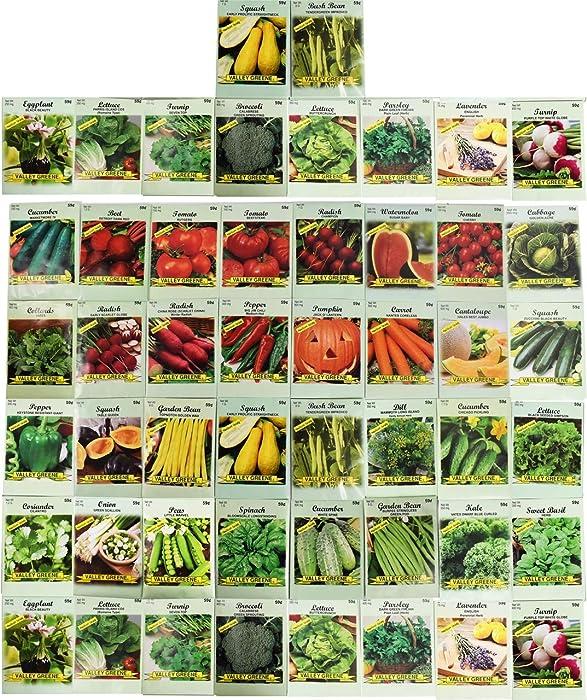 Top 10 Vegetable Garden Seeds Variety