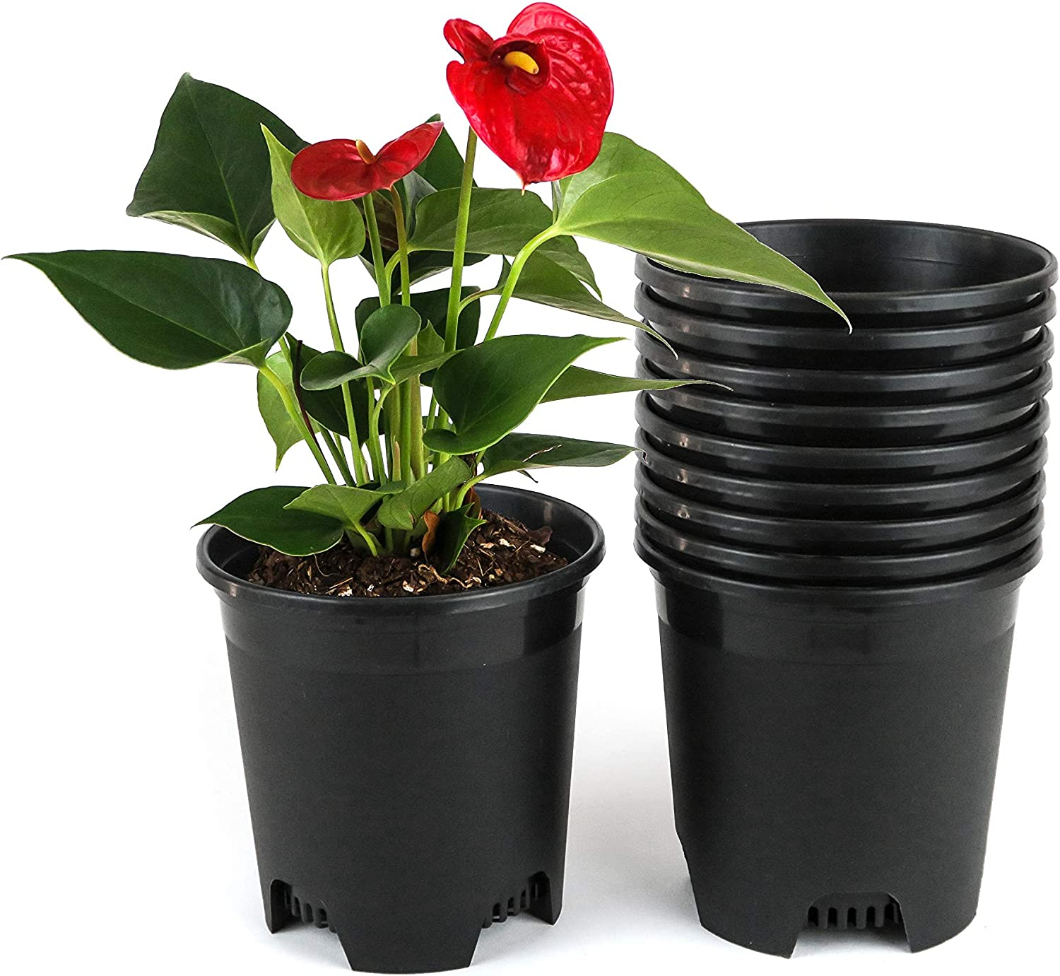 0.5 Gallon Nursery Pot Plastic Planters for Outdoor Indoor Plants 5.5 Inch Gardening Flower Pots 10-Pack 5 Inch Plant Pots with Drainage Holes