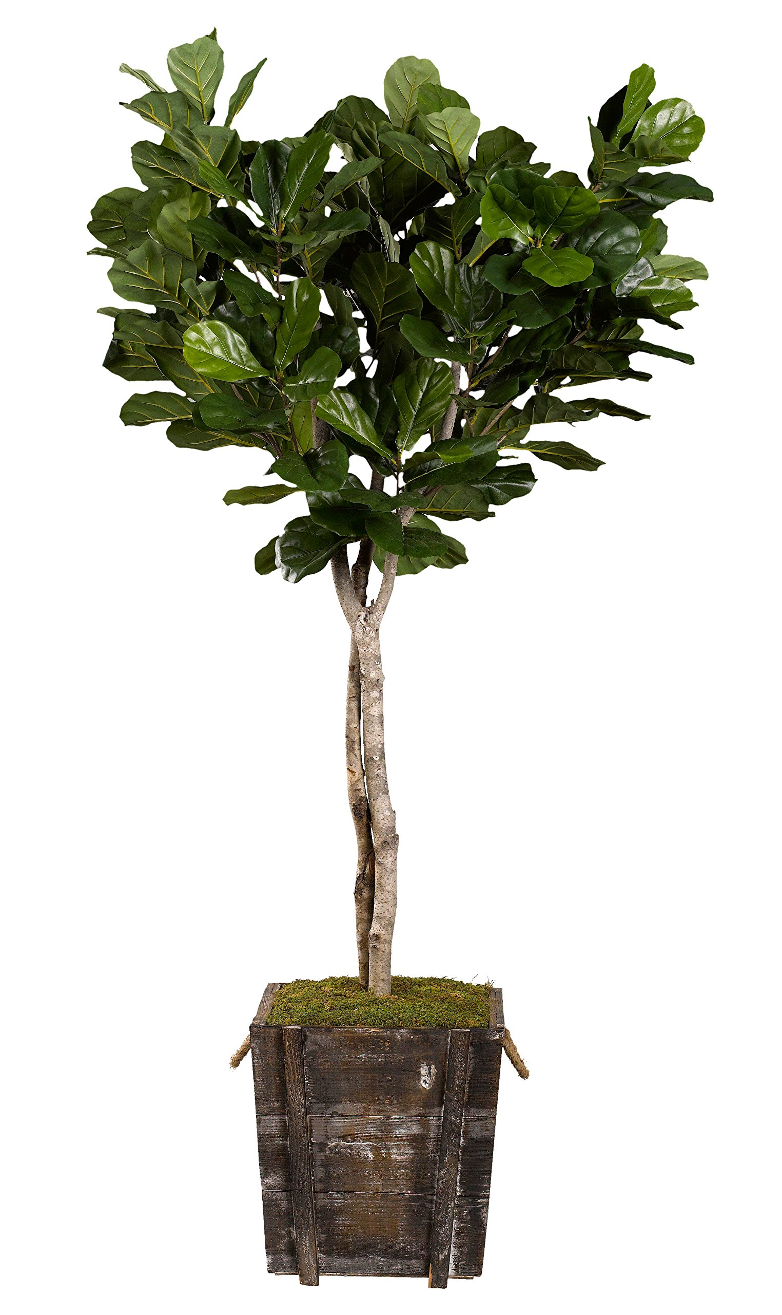 D & W Silks 317110 Fiddle Leaf Fig Tree in Rustic Wooden Planter, Green/Brown