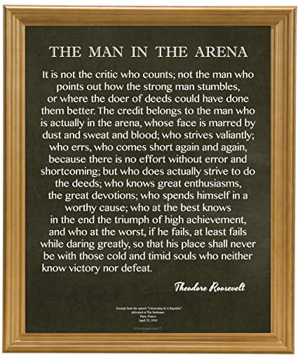 words to describe theodore roosevelt