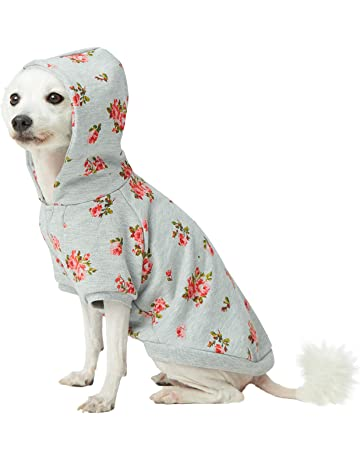 b83774098db Blueberry Pet 2019 New Spring Scent Inspired Rose Flower Pullover Dog  Hooded Sweatshirt in Stylish Grey