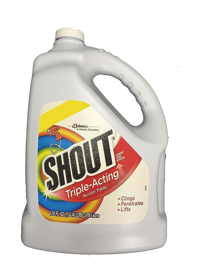Amazon.com: Shout, lavandería Quitamanchas, 1: Health ...