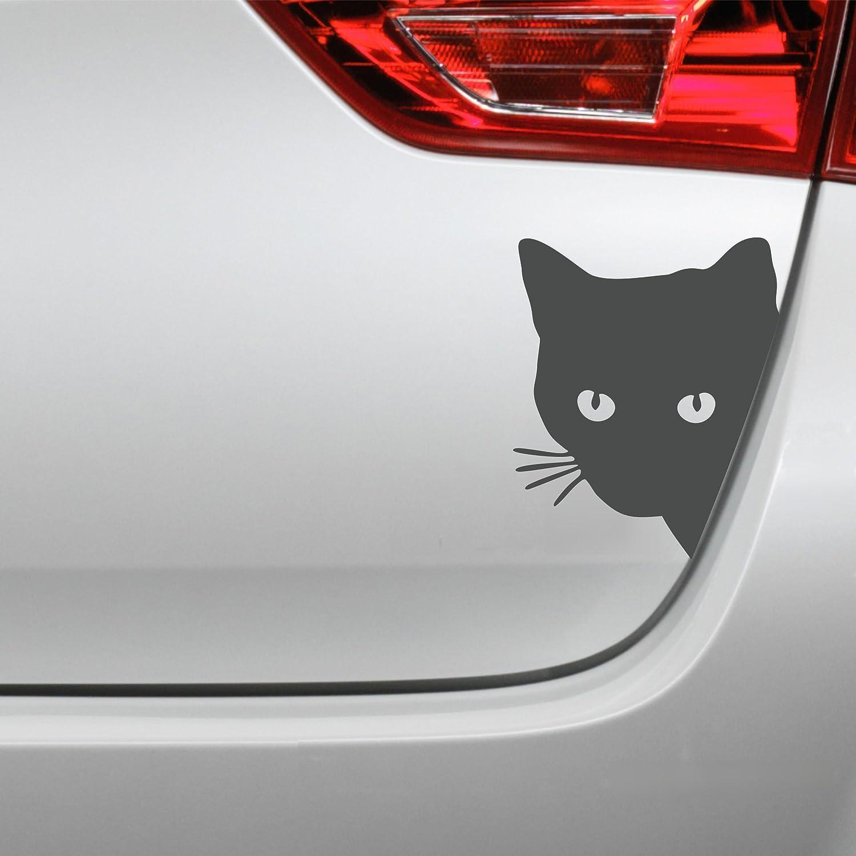 Folistick Katzenkopf Aufkleber Katze Autoaufkleber Schwarz
