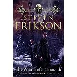 The Wurms of Blearmouth: A Malazan Tale of Bauchelain and Korbal Broach (Malazan Book of the Fallen, 11)