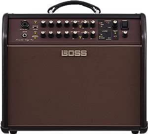 BOSS Amplifier Speaker (ACS-PRO)