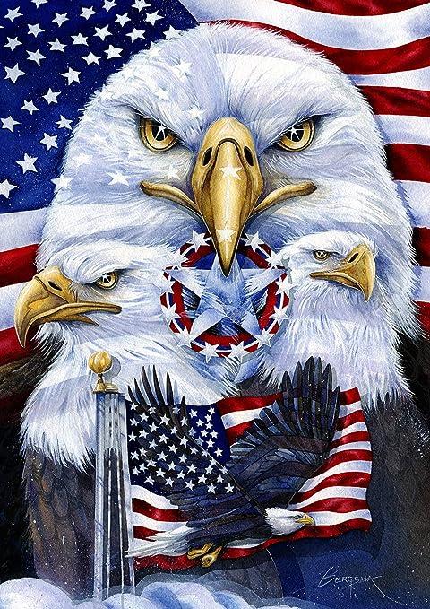 Toland Home Garden 1012377 Patriotic Eagles 28 X 40 Inch Decorative House Flag 28 X 40 Garden Outdoor