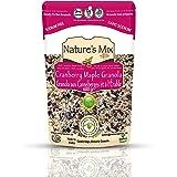 Nature's Mix Cranberry Maple Granola, 600 g