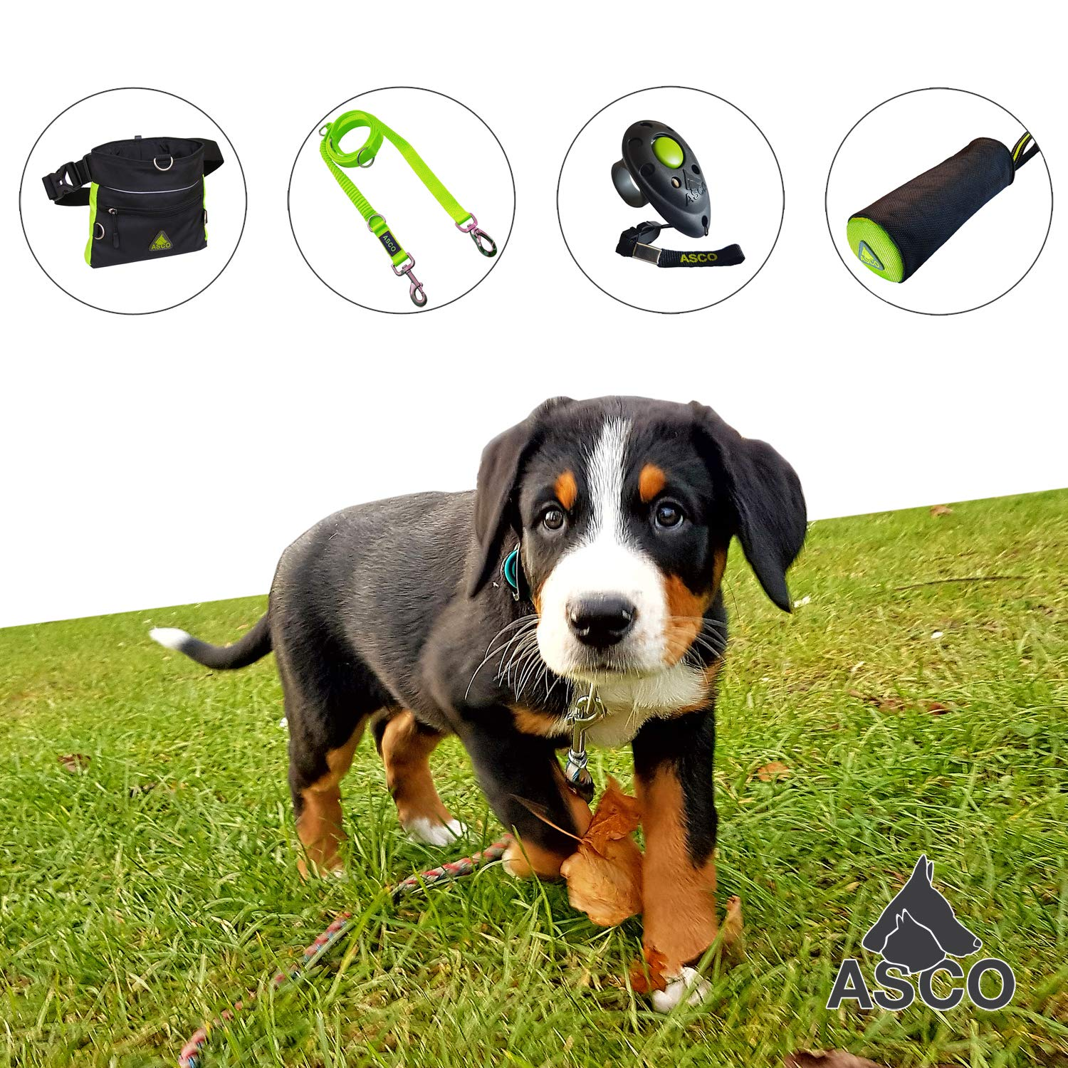 Dog Horse Training Treat Pouch with One Hand Opening System Prime Agility Waist Bag 20 x 20 cm AC60TB black green ASCO Treat Bag