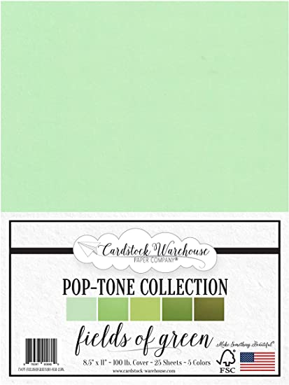 8.5 x 11 inch 100 lb Cover Cardstock Merry-Go-Round Pop-Tone Multi-Pack Assortment 50 Sheets from Cardstock Warehouse