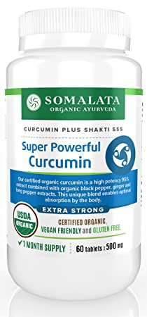 Super Powerful Curcumin – Organic 95 Curcumin Extract with Black Pepper Ginger – 500 mg