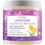 Evarne Lavender Dead Sea Salt Body Scrub with 7 Essential Oils, Calendula, and Vitamin E