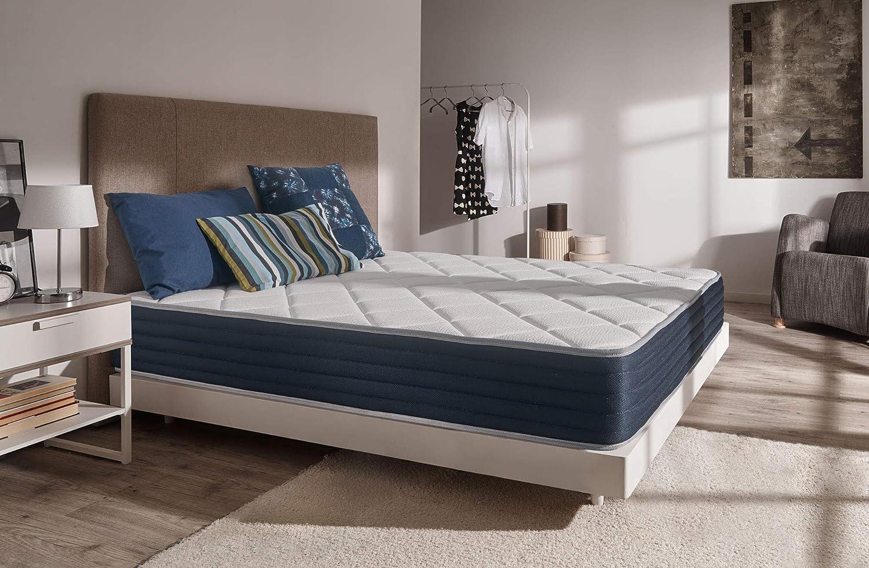 /à m/émoire de Forme THERMOSOFT/® LITERIE Haut DE Gamme Mousse Blue Latex/® /à 7 Zones de Confort Matelas Ideal Visco EQ 70x190 cm NATURALEX 25 cm
