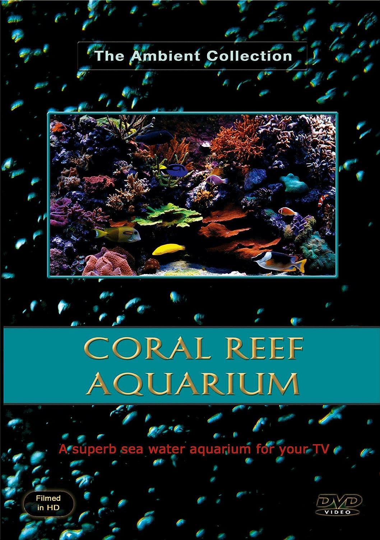 Acuario DVD - Acuario de arrecifes de Coral 110 Actas de peceras HD/definación alta con música y sonidos de la naturaleza: Amazon.es: Cine y Series TV