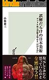 誤解だらけの日本美術~デジタル復元が解き明かす「わびさび」~ (光文社新書)