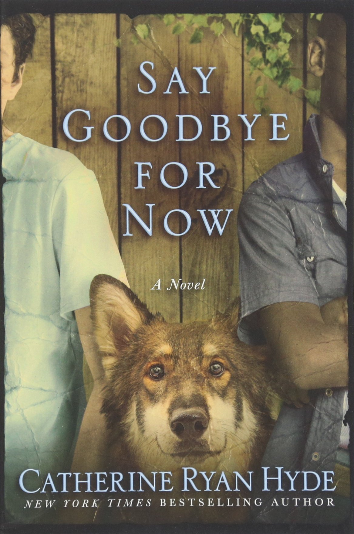 Read Online Say Goodbye for Now pdf