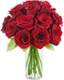 KaBloom Romantic Red Rose Bouquet: 12 Fresh Cut Red Roses (Long Stemmed) with Vase