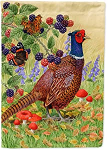 Caroline's Treasures ASA2121GF Pheasant Flag Garden Size, Small, Multicolor
