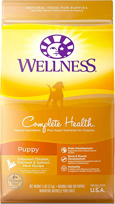 Top 10 Wellness Dog Food 30 Pound Bag