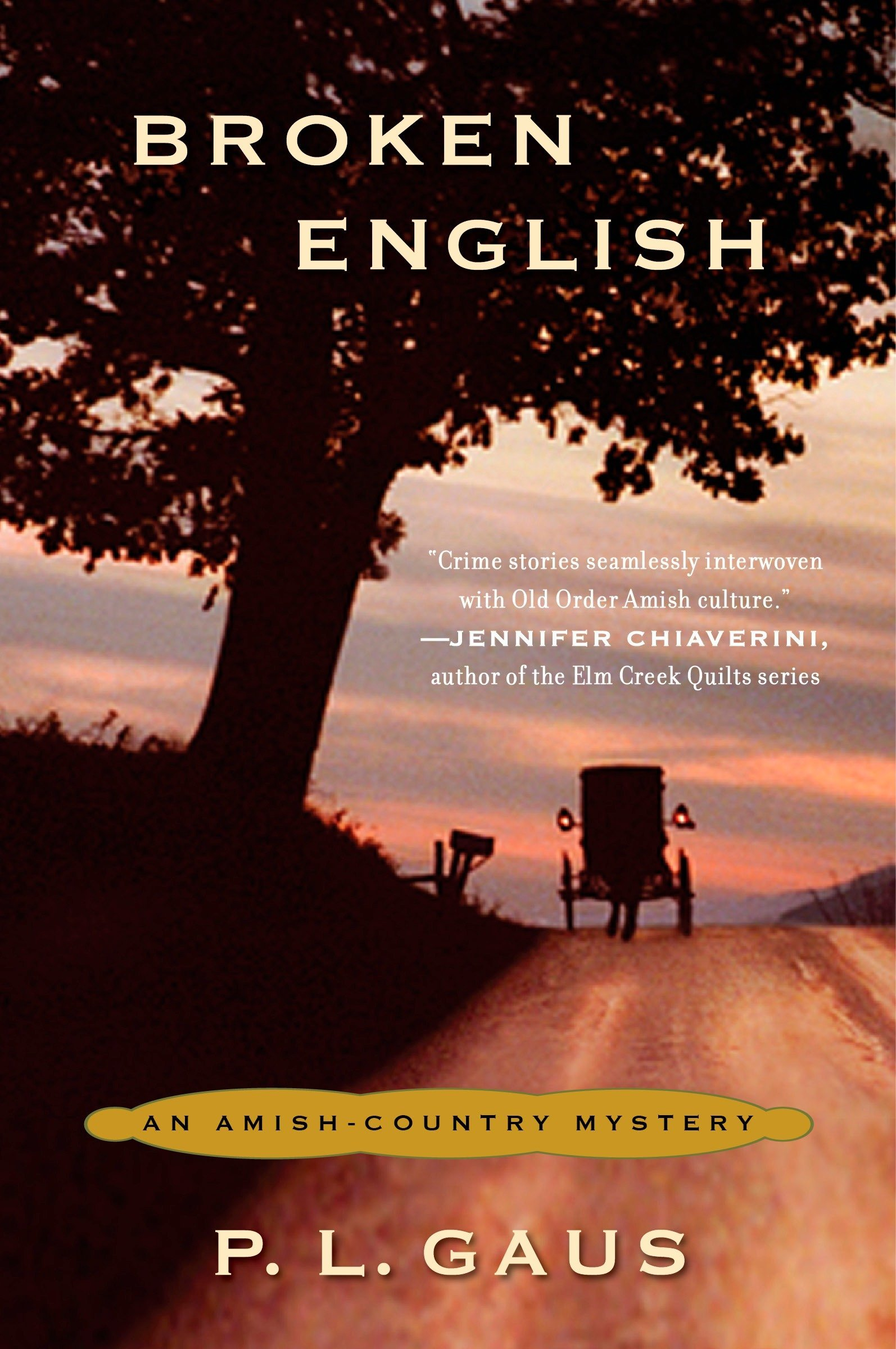 Read Online Broken English: An Amish-Country Mystery pdf
