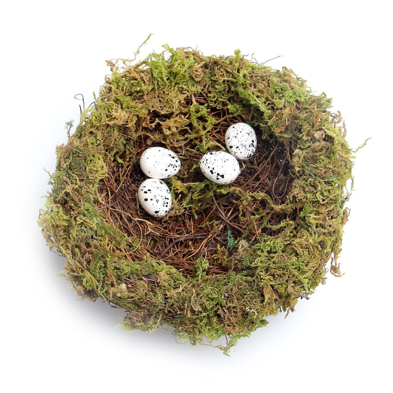 MomokoPeng Set of 2 Spring Bird Nests With Eggs,Twig Bird Nest Decorative Ornament With Clip(Green Bird's Nest) by MomokoPeng (Image #3)