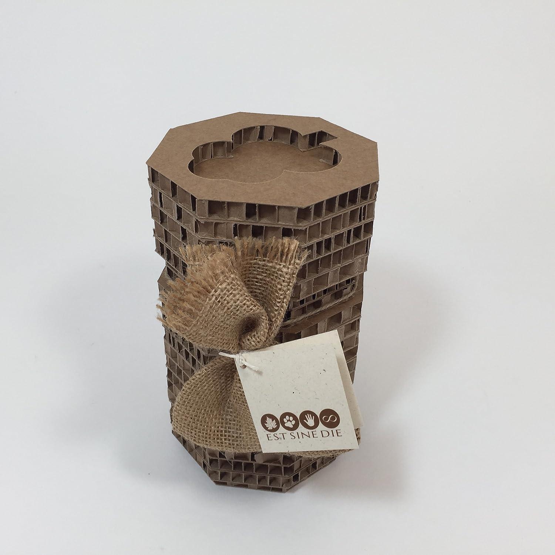 Urna FUNERARIA para mascotas - CARDEA - pequeña (cm.12x12x20) - lt ...