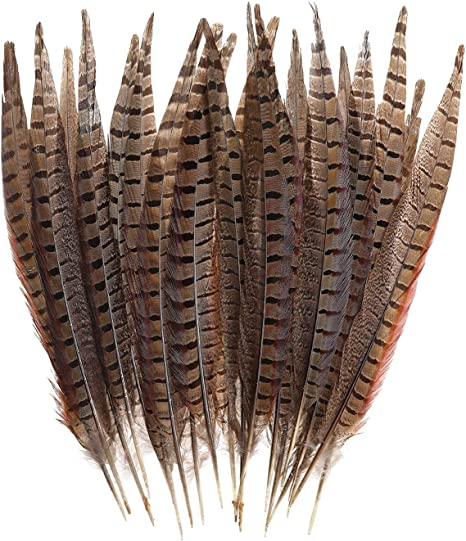 20Pcs Natural Pheasant Tail Feathers/for Craft or Decoration 25-30cm Long