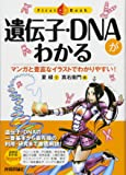 遺伝子・DNAがわかる (ファーストブック)