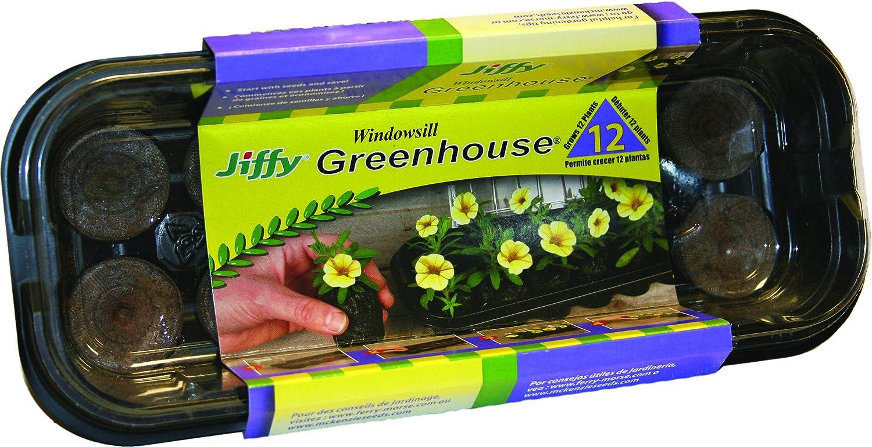 Jiffy J312 12Pel Wndwsll Greenhouse, Mini, Black with clear dome
