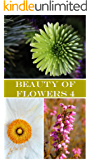 Beauty of Flowers 4: Photos (English Edition)