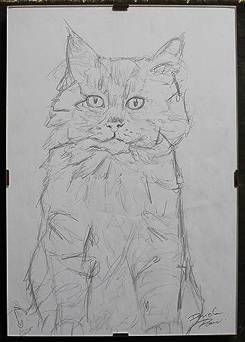 El gato- dibujo a lápiz sobre papel+ marco al dia,dimensiones cm ...