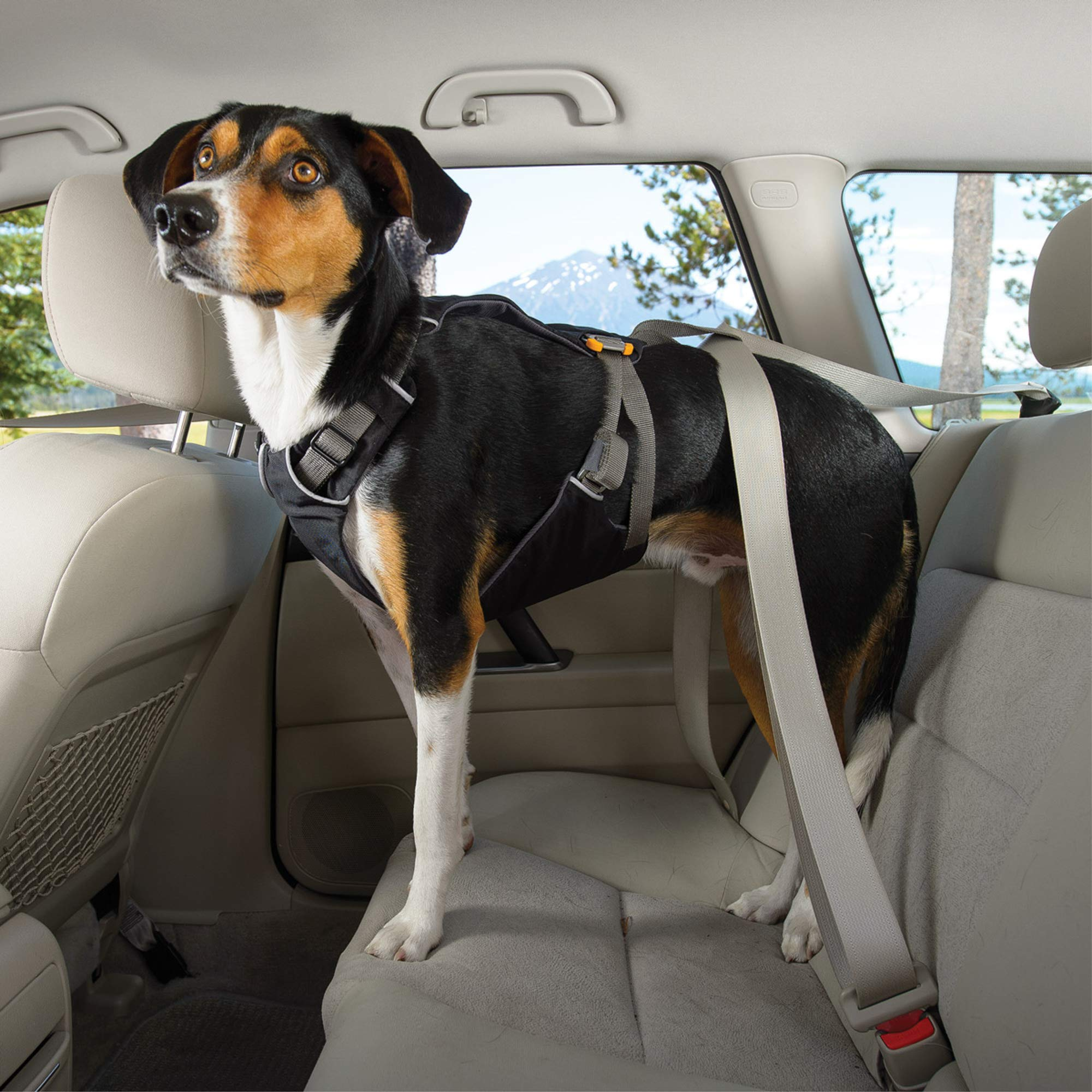 RUFFWEAR - Load Up, Dog Car Harness with Strength-Rated Hardware, Secure Vehicle Restraint, Universal Seat Belt Attachment, Obsidian Black, Medium by RUFFWEAR (Image #8)