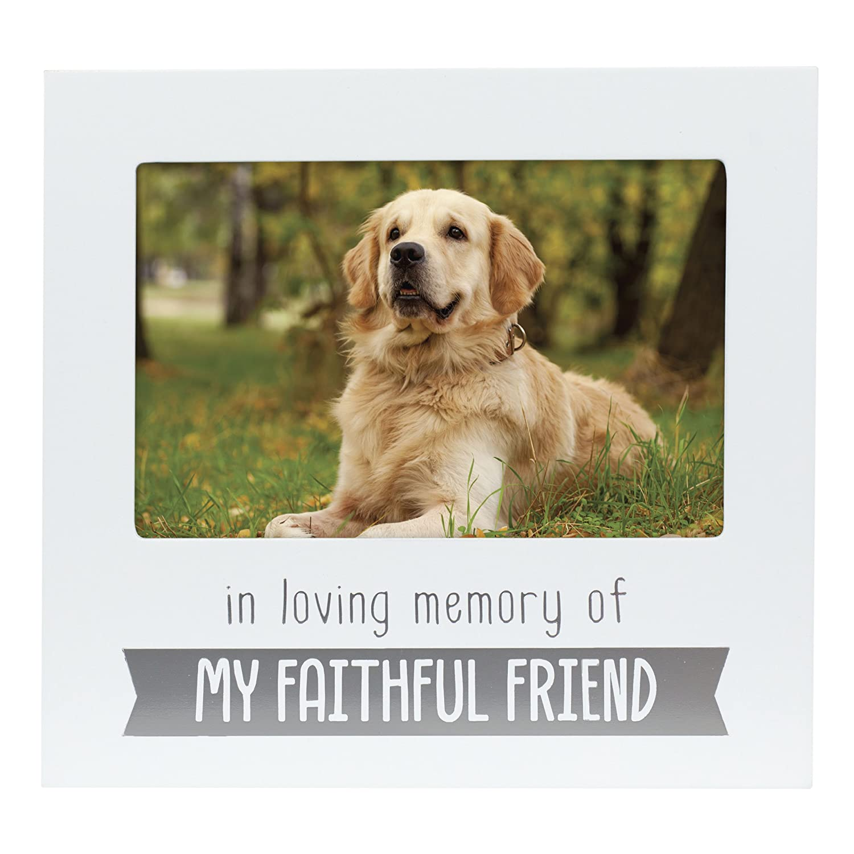 Pearhead Pet Memorial Sentiment Frame, Pet Memory Picture Frame, Dog or Cat Tribute Keepsake 8128WPAFneL