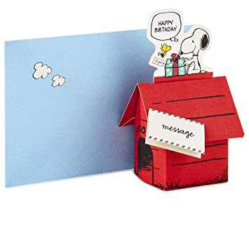 Image Unavailable Not Available For Color Hallmark Pop Up Peanuts Birthday Card