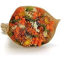 Bouquet-Fantasy- Sanremo fleurs séchées de la Riviera dei Fiori .Italie