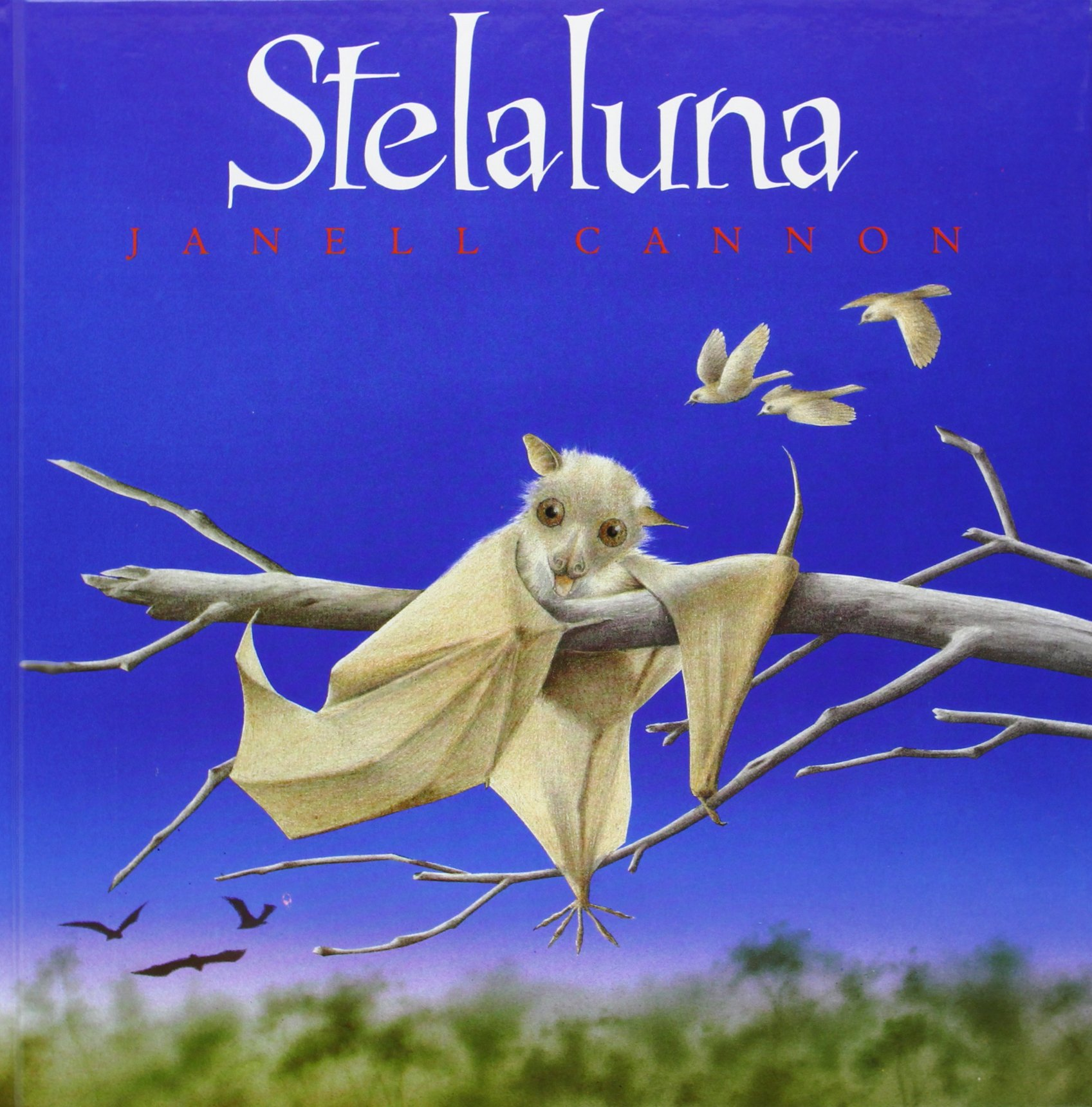 Download Stelaluna (Spanish Language) pdf