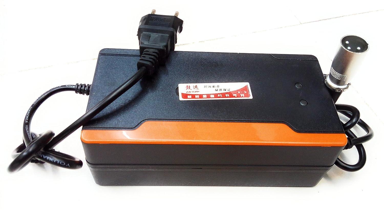 Cargador inteligente de 48V para patinetes eléctricos tipo ...