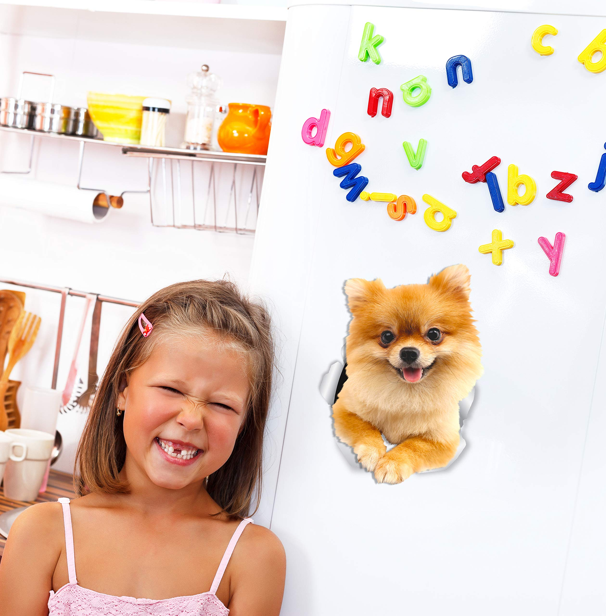 Winston & Bear Cute Pomeranian Dog Wall Decals - 2 Pack - German Spitz Dog Toilet Sticker – 3D Dog Car Window and Bumper Sticker - Retail Packaged Pomeranian Lover Gifts 2