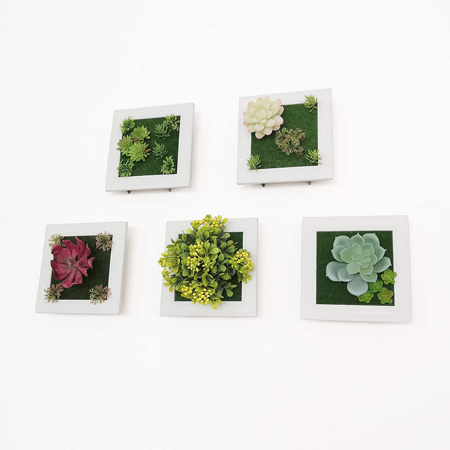 Amazon Com Artificial Plant Frame Wall Hanging For Indoor Wall Decor Tabletop 3d Faux Succulents For Home Living Room Bedroom Cafe Decorative Set Of 5 Kitchen Dining