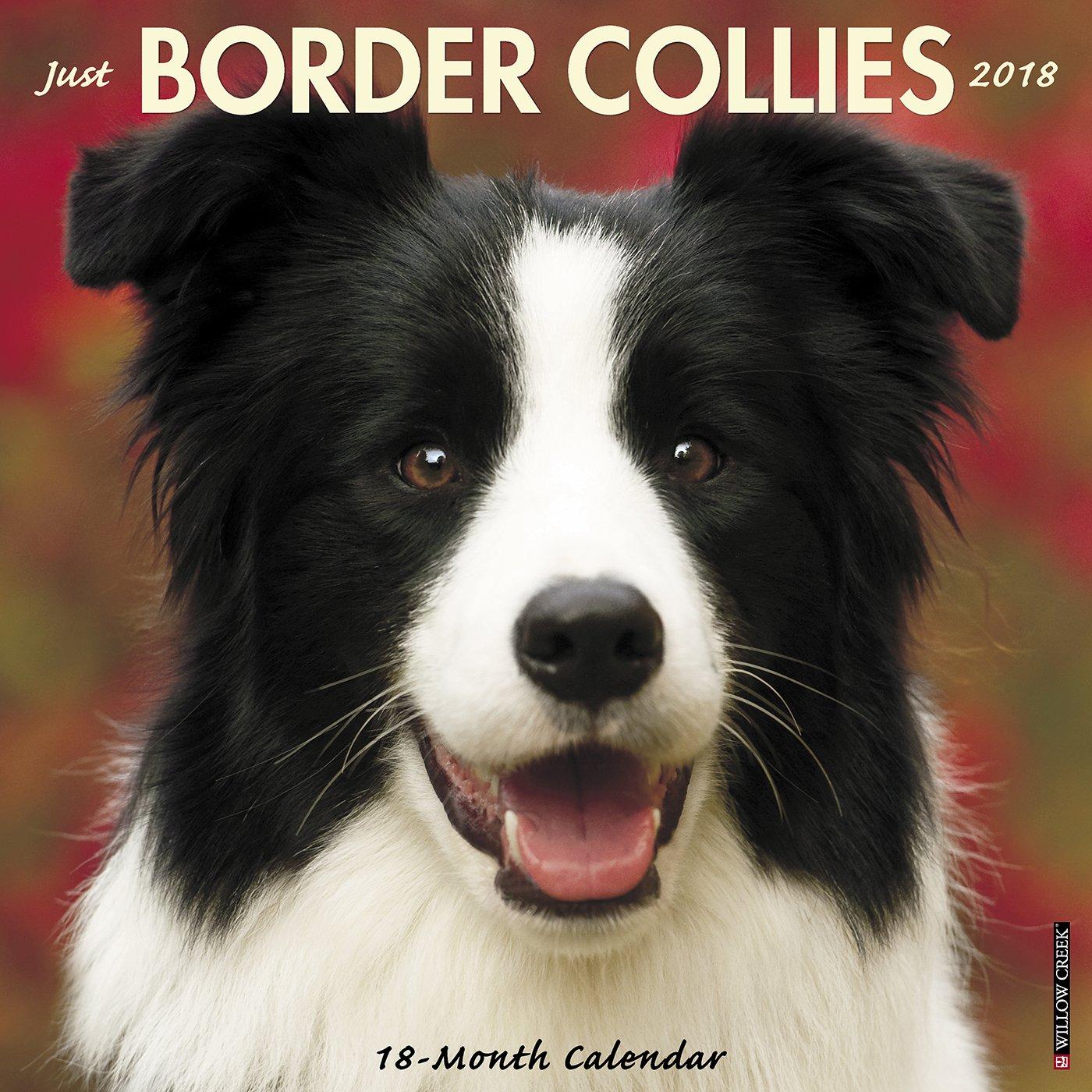 Download Just Border Collies 2018 Calendar PDF