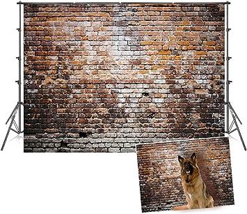 Amazon.com: Fondo de madera de color oscuro para fotografía ...