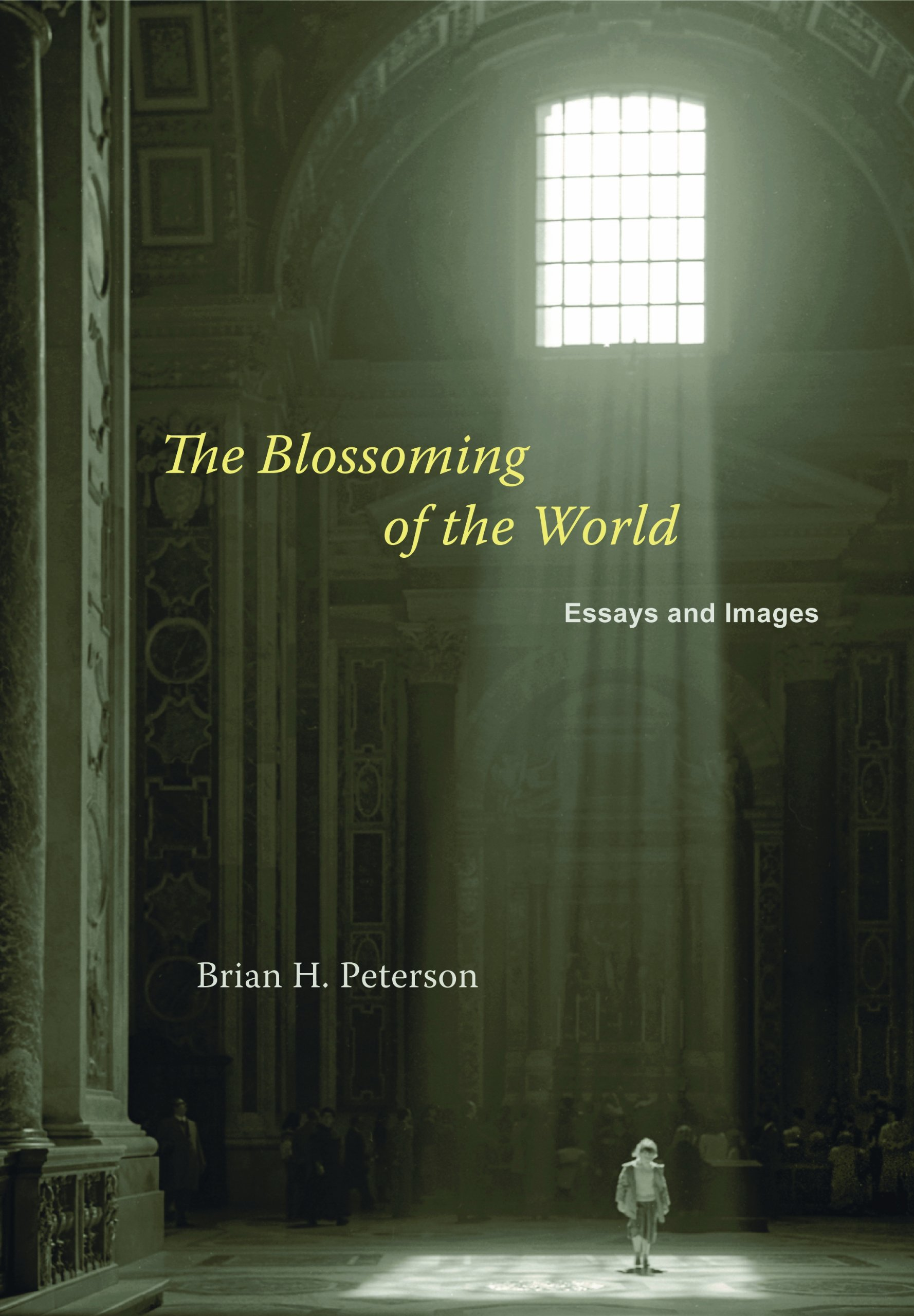 Read Online The Blossoming of the World: Essays and Images PDF