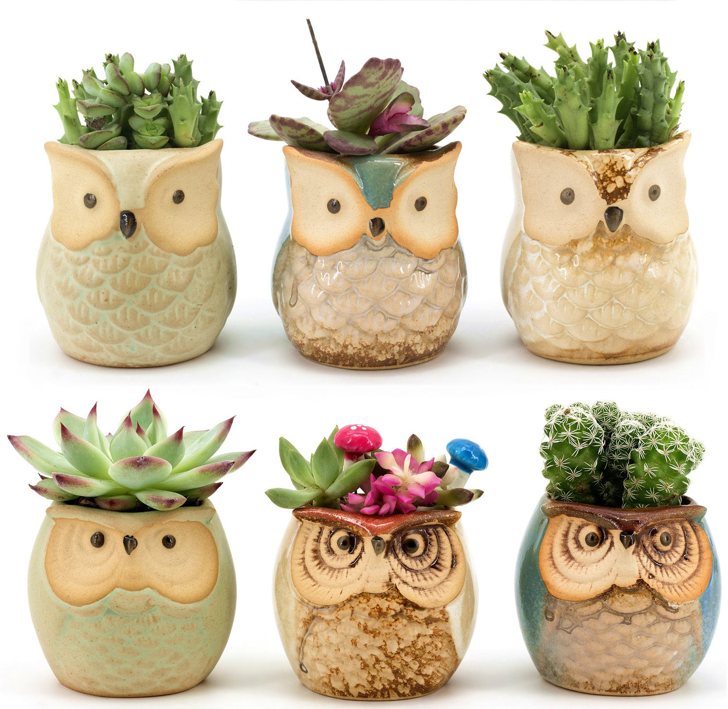 Weierken Mini 6PCS Owl Pot Ceramic Flowing Glaze Base Serial Set Succulent Plant Pot Cactus Plant Pot Flower Pot Container Planter Bonsai Pots With A Hole by Weierken