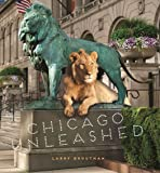 Chicago Unleashed
