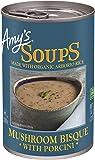 Amazon.com : Wolfgang Puck Organic Classic Minestrone Soup ...