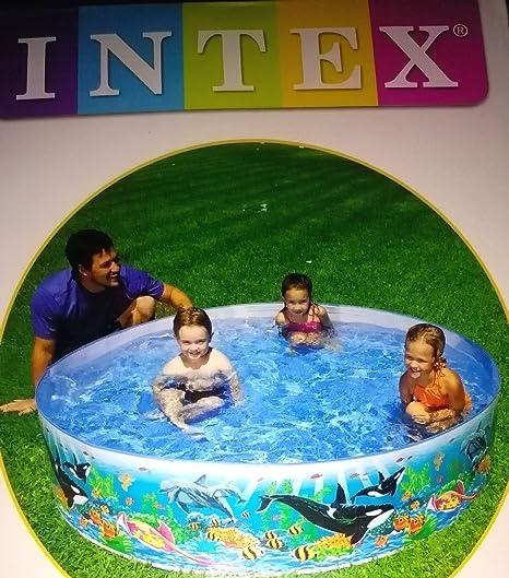 Amazon.com: Plástico Snapset exótico Reef piscina: Toys & Games
