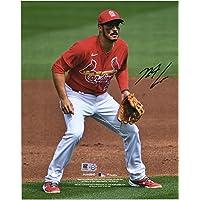 """$139 » Nolan Arenado St. Louis Cardinals Autographed 8"""" x 10"""" Fielding Stance Photograph - Autographed MLB Photos"""