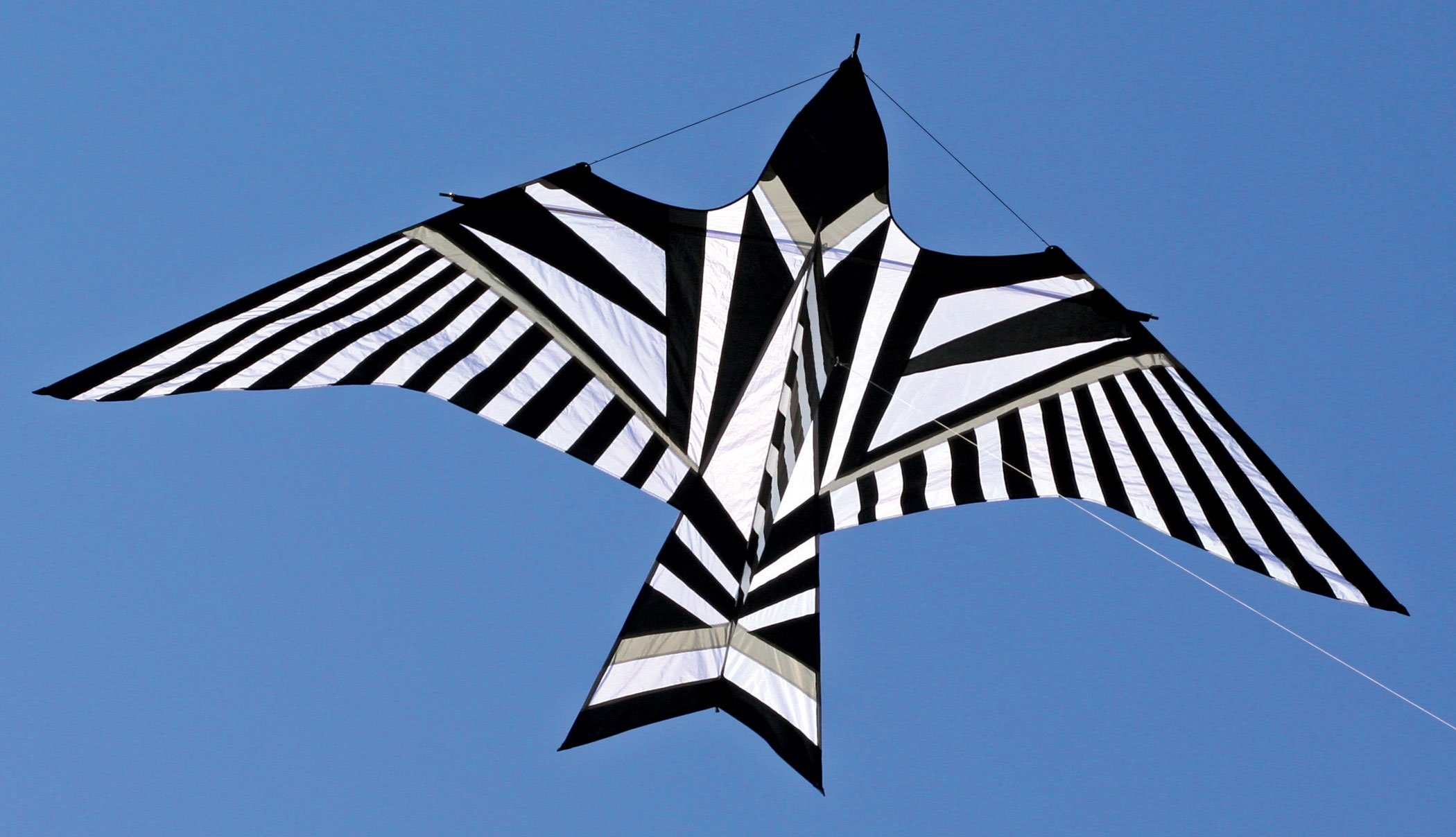 George Peters' Sky Bird Kite - Black and White by Into The Wind