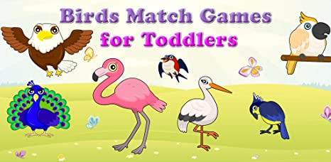 Amazon.com: Birds Match Games for Toddlers and Kids : discover the bird species! FREE app: Appstore for Android